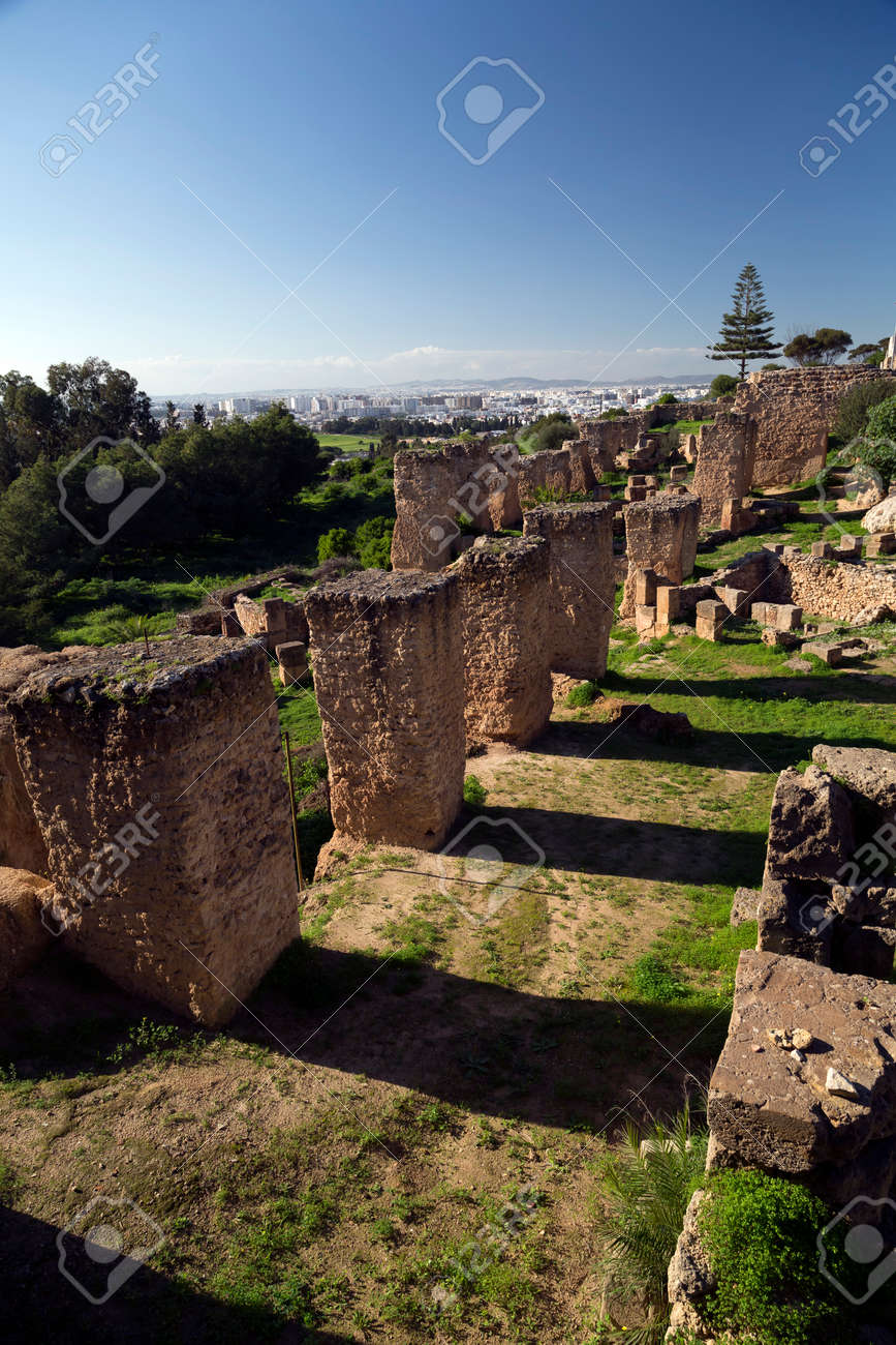 Ancient remains of Carthage civilization in the museum of Carthage, Tunis, Tunisia - 74846880